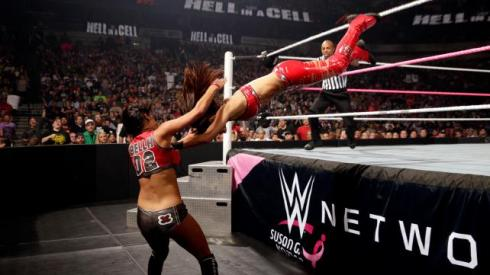 Hell in a cell brie bella suicide dive