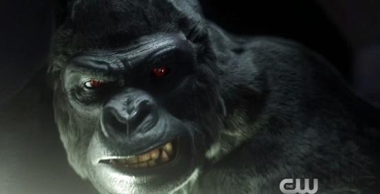 Gorilla Grodd close up