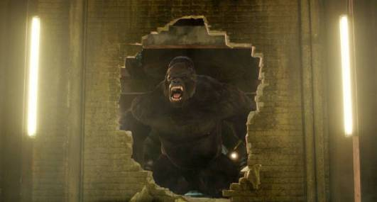 Grodd and busted wall