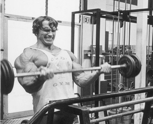 Arnold-old